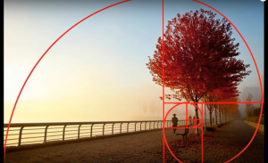 Golden Ratio Applied to a Painting
